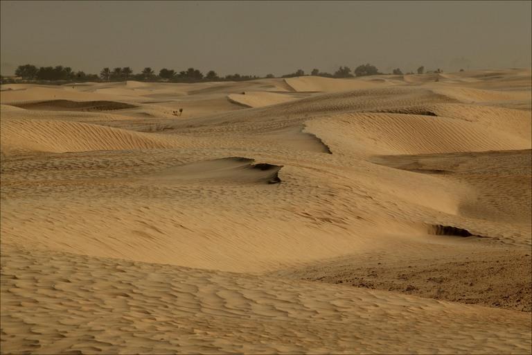 Sand-dune-sea-of-sand